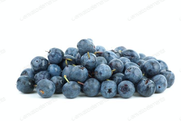 Small pile of billberries