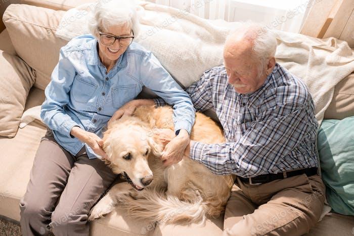 Happy Senior Couple with Pet