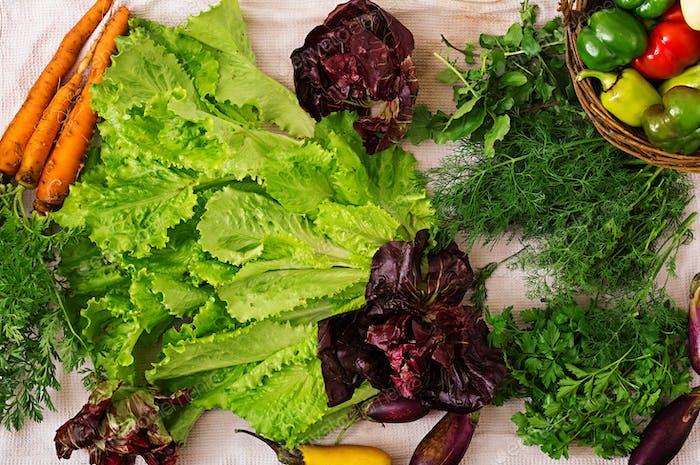 Surtido de verduras y hierbas verdes. Mercado. Lazo plano. Vista superior