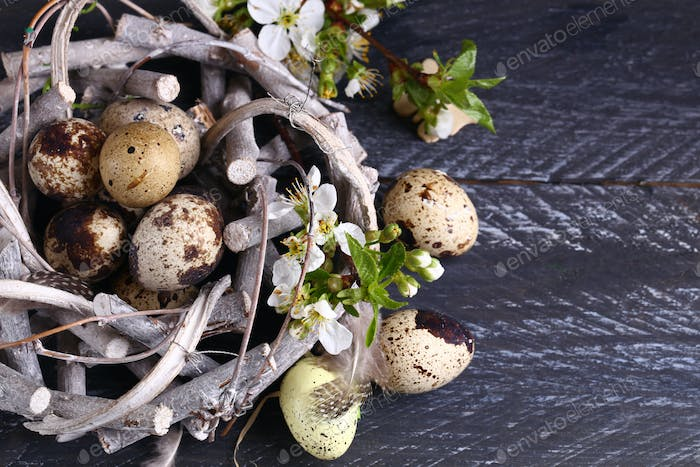 Composition with Quail Eggs