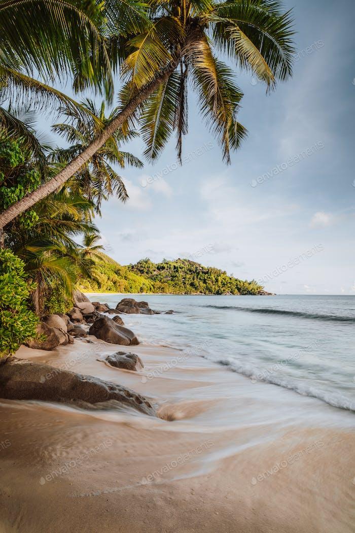 Mahe Island, Seychelles. Holiday vocation on the beautiful Anse intendance tropical beach. Coconut