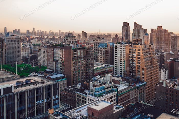 New York districts view