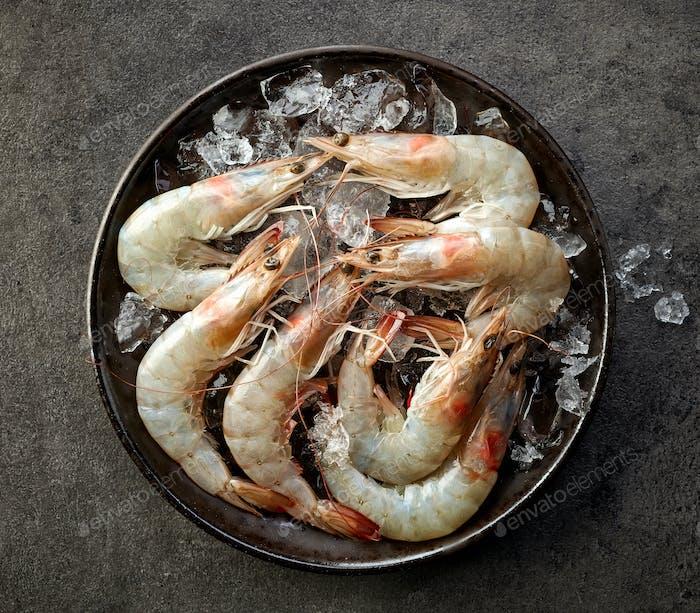 fresh raw prawns and ice
