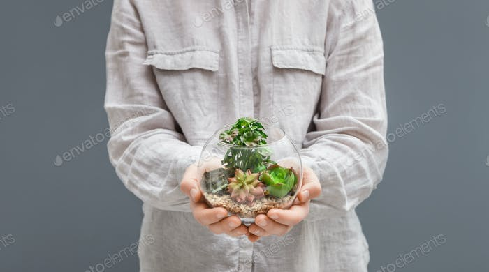 Woman holding mini glass florarium