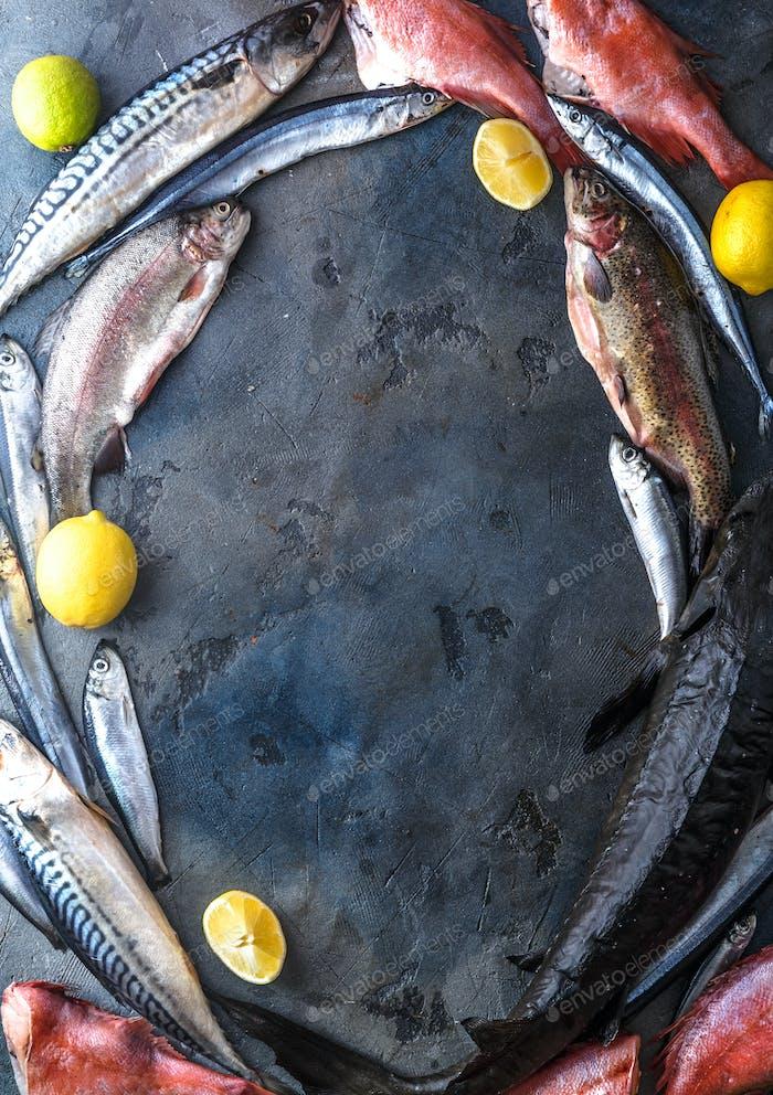 Assortment of fresh fish on dark background, top view