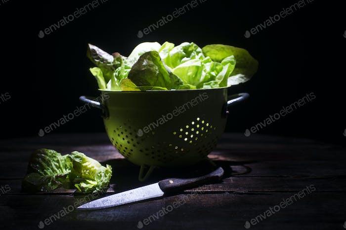 Presentación de ensalada verde