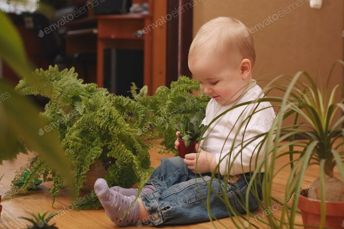 little boy with many plants at home