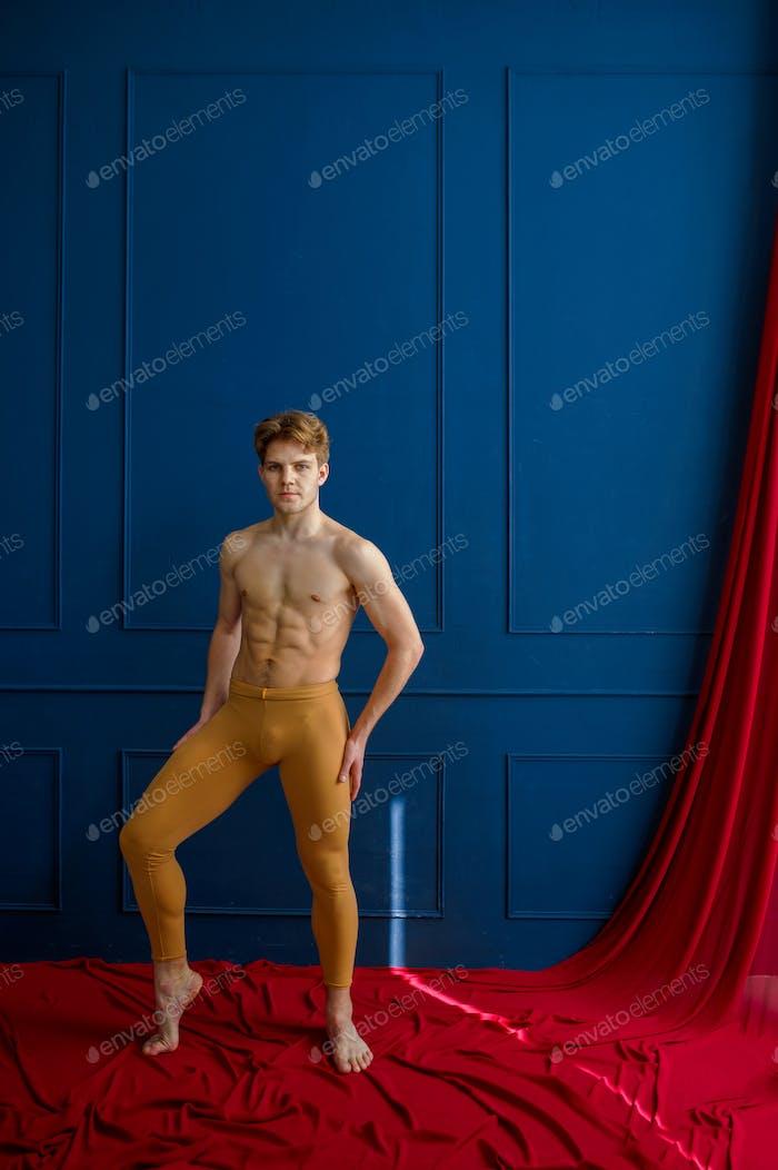 Male ballet dancer poses in dancing studio