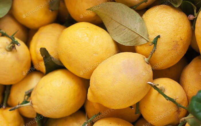 Fresh organic lemons on display at an Italian farmers' market