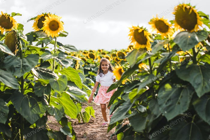 Pretty girl standing among sunflowers