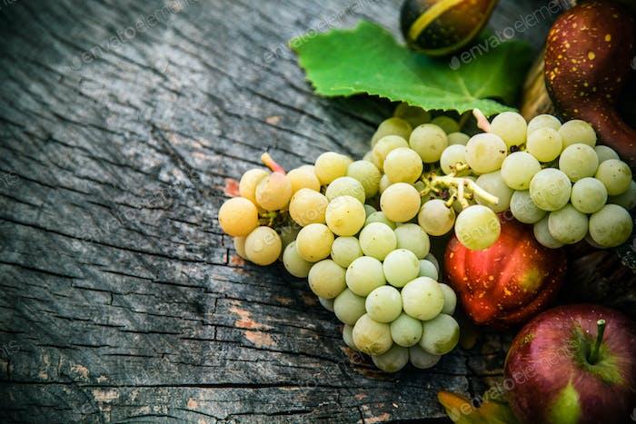 Fruta otoñal