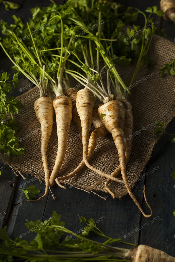 Raw Organic Parsley Root