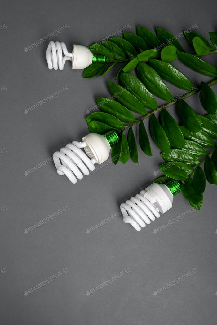 Three LED lamp with green leaf, ECO energy concept