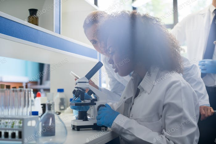 Male Scientist Working With Microscope, Team In Laboratory Doing Research, Man And Woman Making