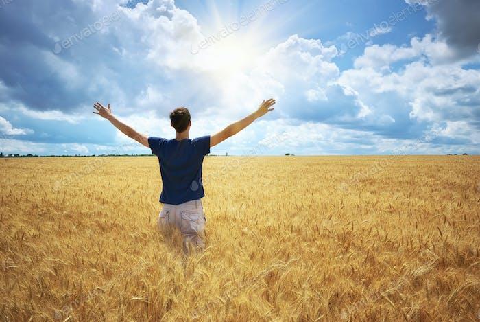 Mann auf gelber Weizenwiese