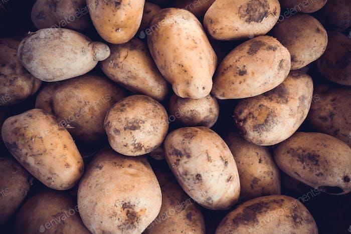 Kartoffeln rohes Gemüse Essen. Frische Bio-Jungkartoffeln