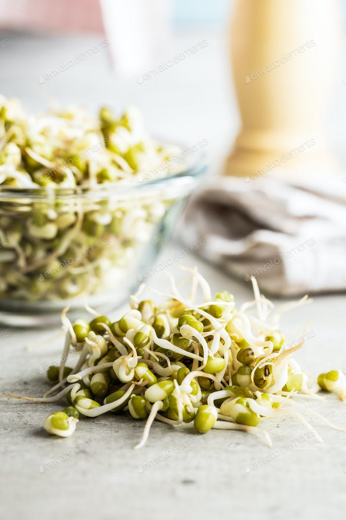 Sprouted green mung beans. Mung sprouts.