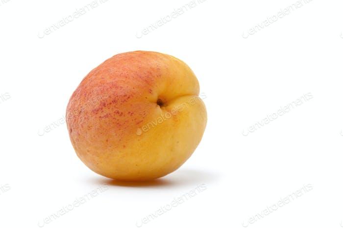 Whole fresh apricot