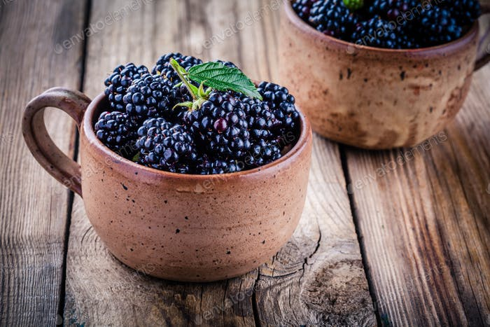 juicy fresh organic blackberries in mugs