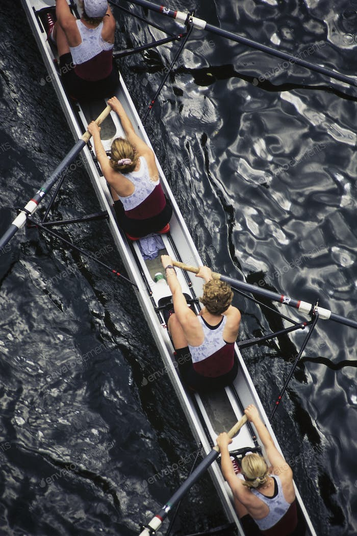 Overhead view of female crew racers rowing scull boat.