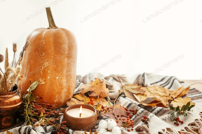 Happy Thanksgiving concept. Beautiful pumpkin, candle light, fall leaves