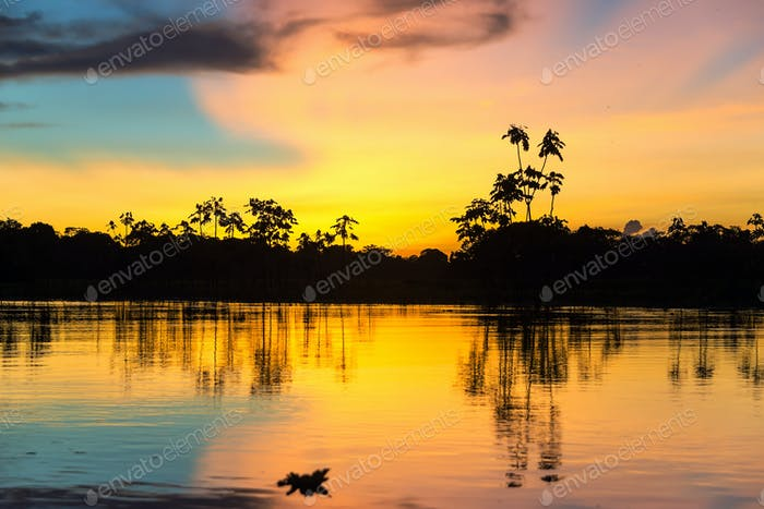 Colorful Amazonian Sunset