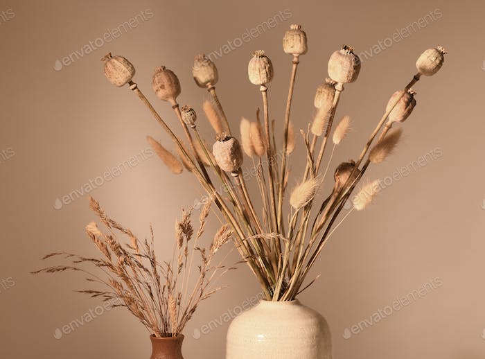 Vases with dried plants