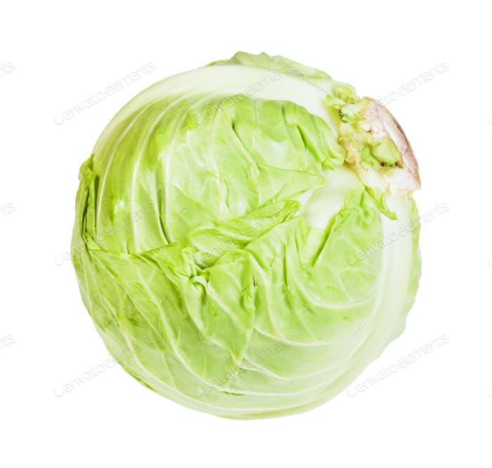 single fresh white cabbage isolated on white