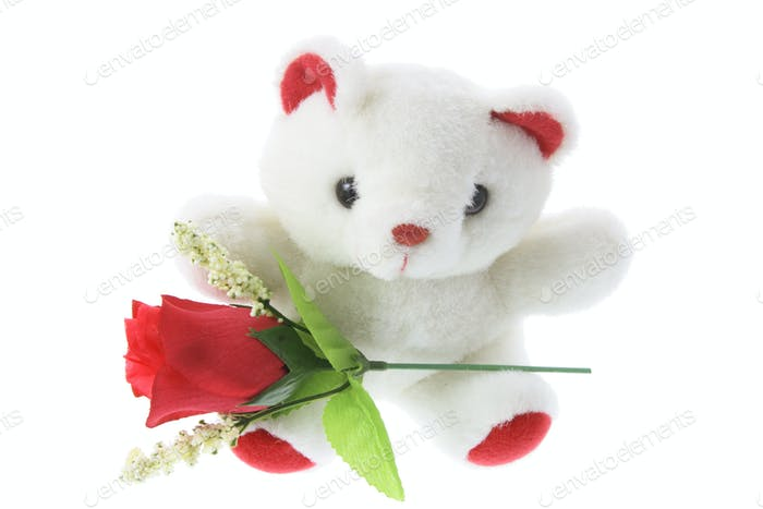 Teddy Bear with Red Roses