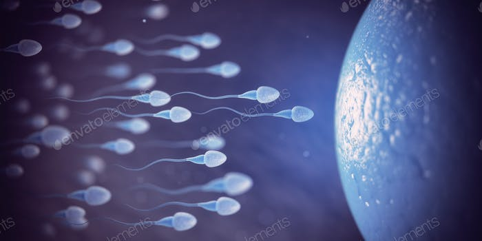 Sperm and egg cell on microscope.  Scientific background.