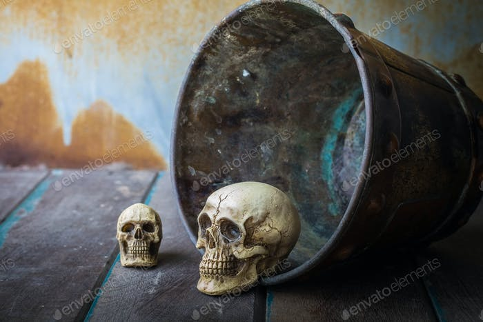 Skull in a bucket on wooden
