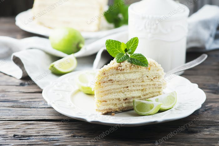 Traditional russian cake Medovik with honey