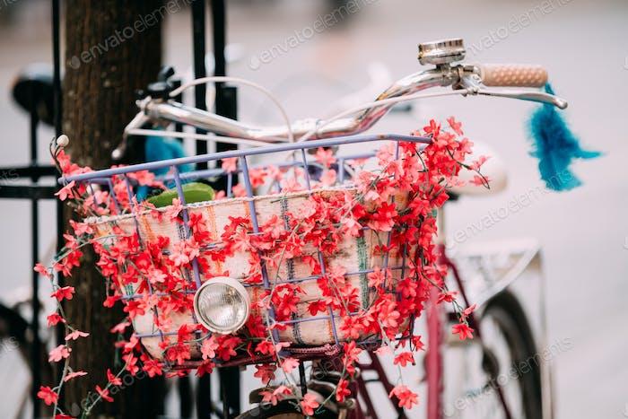 Cerca De Cesta Y Hadlebar De Bicicleta Mujer Equipado Baske