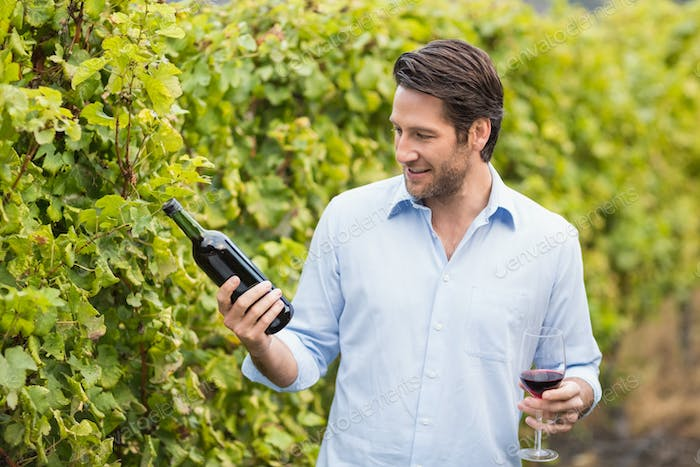 Young happy man looking at wine bottle in the grape fields