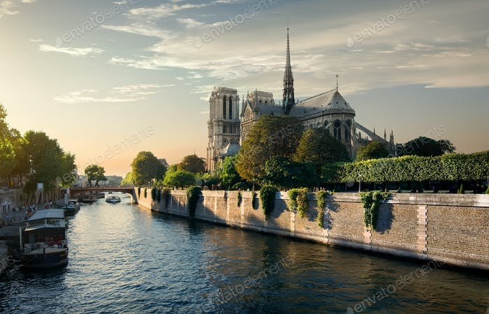 Notre-Dame in the morning