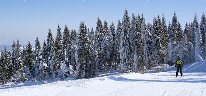 skier descends