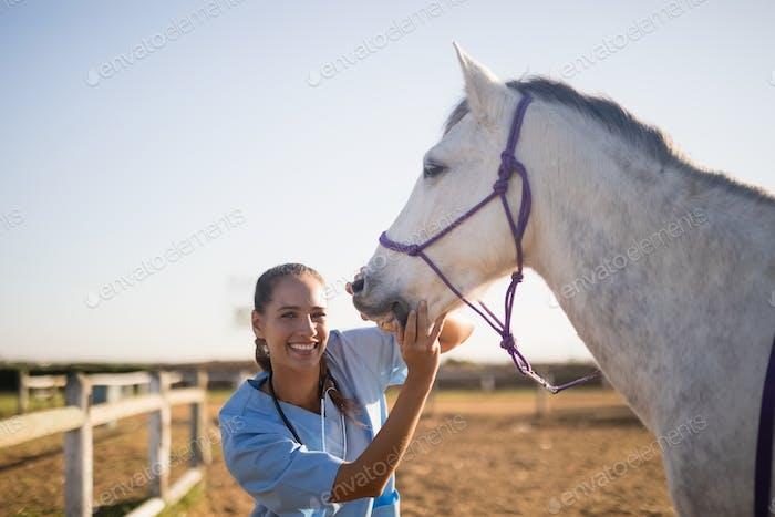 Smiling female vet eaxmining horse at barn