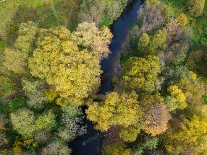 Aerial drone view of autumn forest and small river