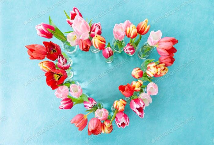 Bunte frische Tulpen