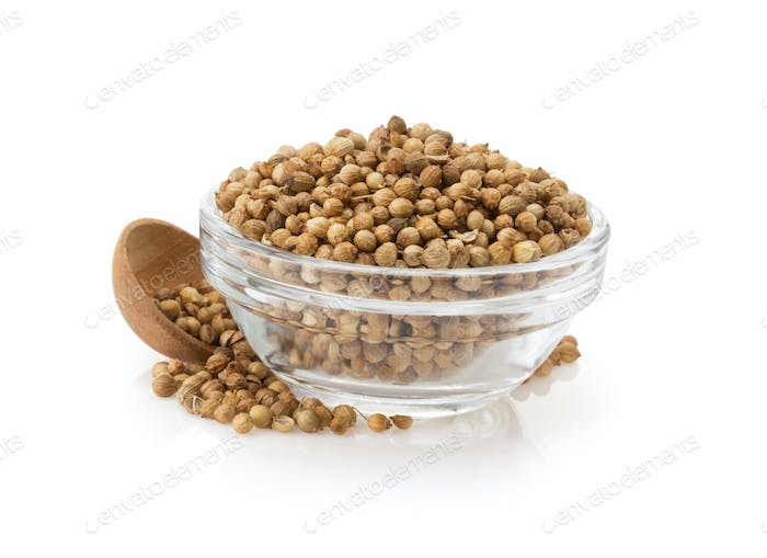 coriander spices in bowl