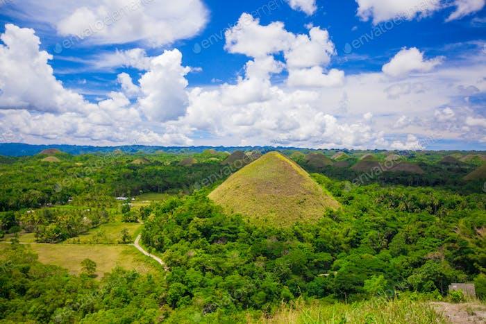 Grüne saftige und bunte Chocolate Hills in Bohol, Philippinen
