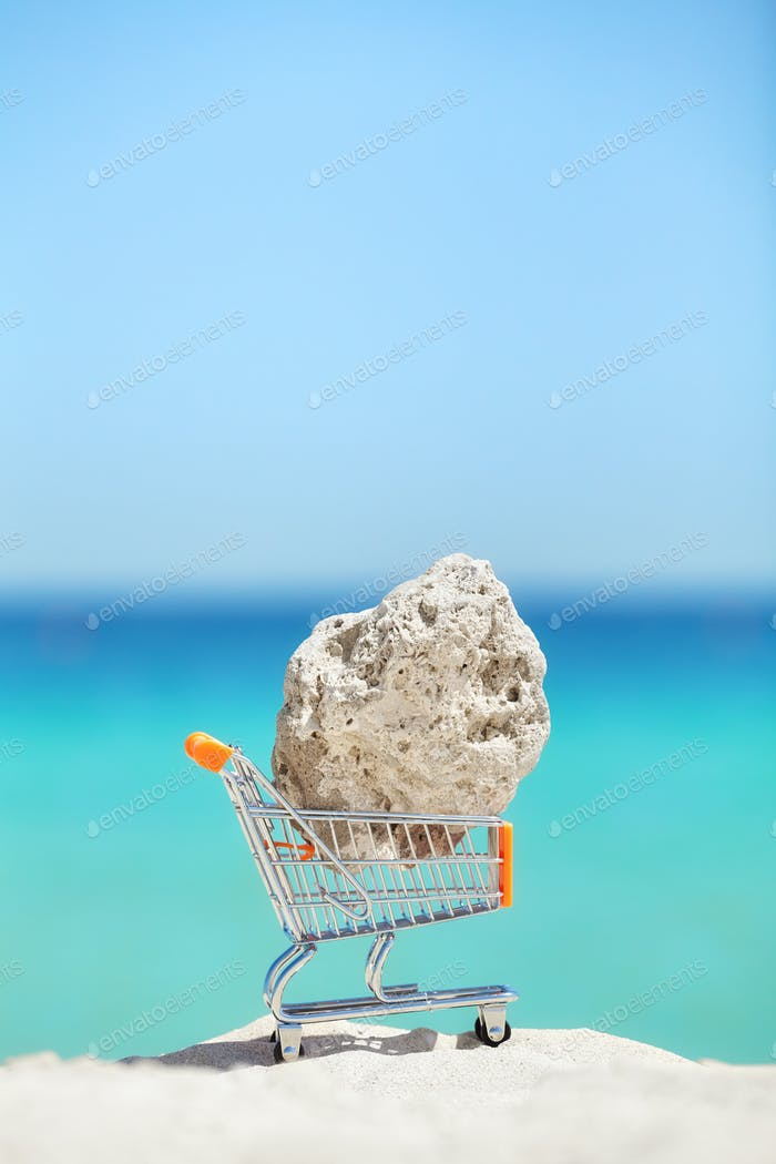 Piece of a coral in shopping cart miniature on a beach.