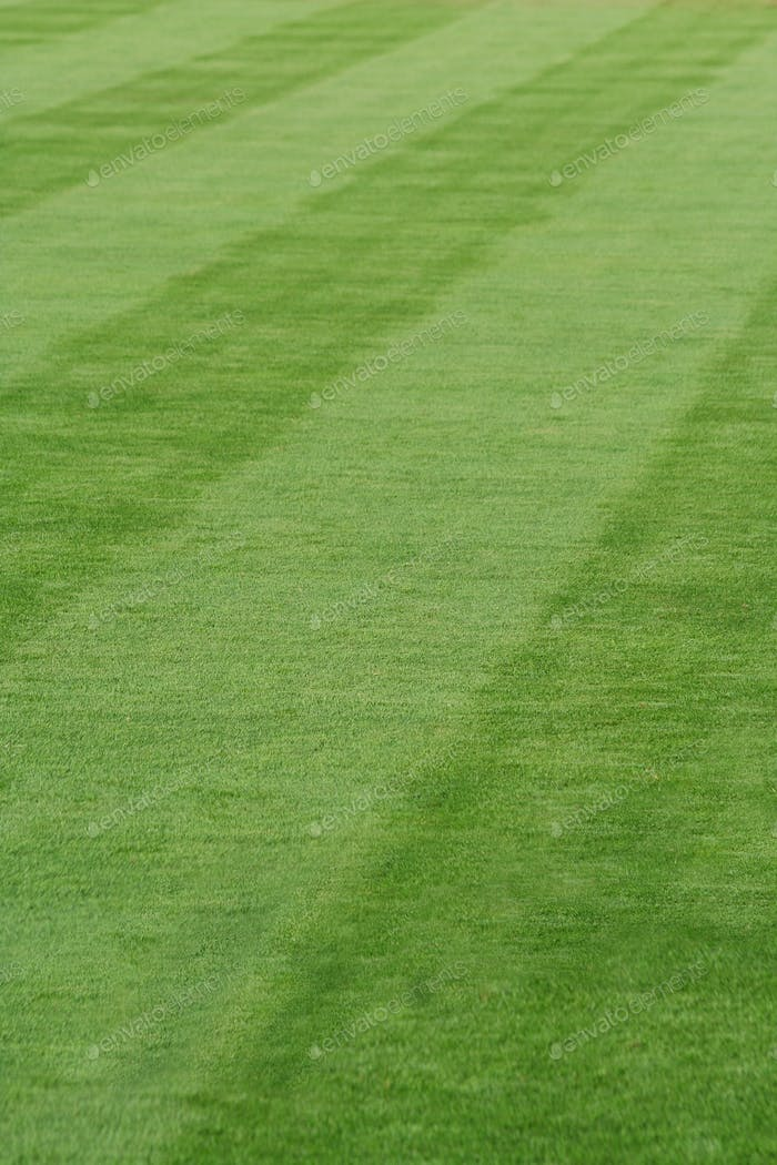 Grass stripes