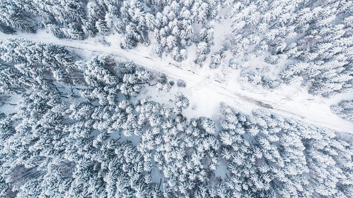 Country Lane Road in Winter Snowy Forest, Top Down Aerial View