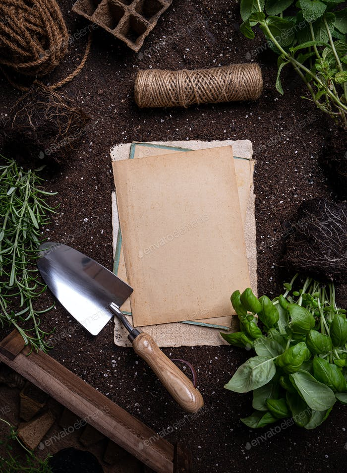 Herbs and gardening tools