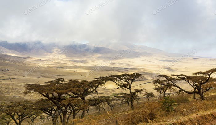 Beautiful and dramatic landscape in Ngorongoro