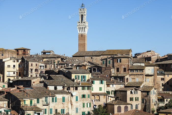 Tower of Siena town hall