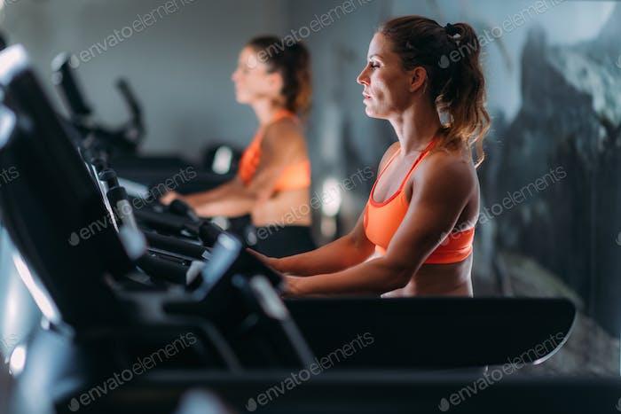Gym fitness dsc4390 f1 p