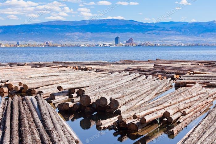Holz schwimmend Okanogan Lake Kelowna BC Kanada