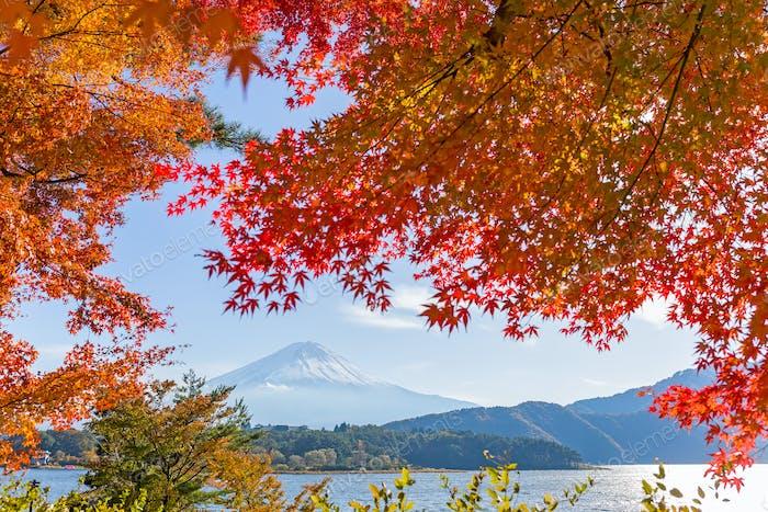 Mt.Fuji en Otoño